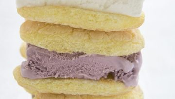 ice-cream-sandwich-HFSV7640